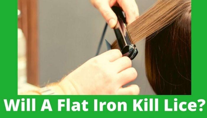 Will a Hair Straightener Kill Nits